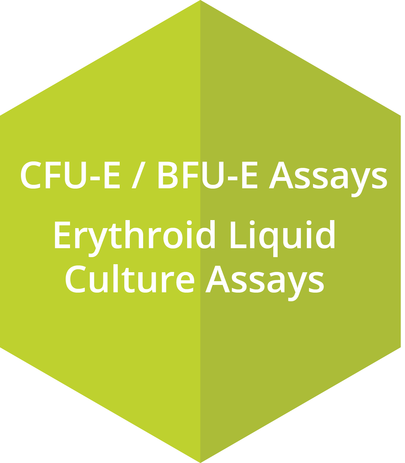 CFU-E assays, BFU-E assays, Erythroid Liqiud Culture assays