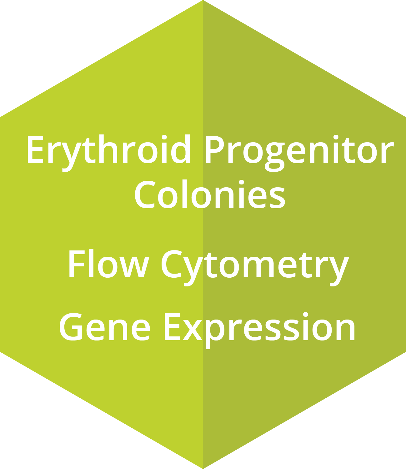 Erythroid Progenitor Colonies, Flow Cytometry, Gene Expression