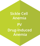 Anemia_Hex5