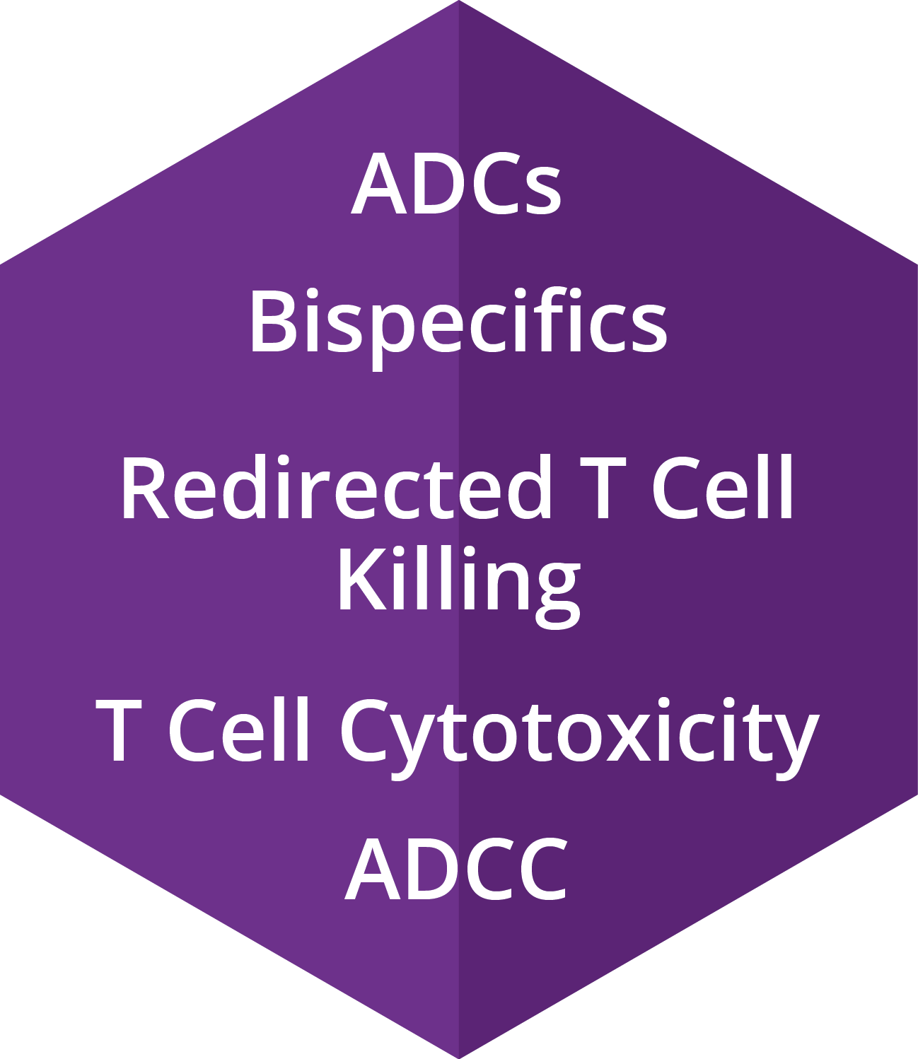ADCs, Bispecifics, Redirected T Cell Killing, T Cell Cytotoxicity, ADCC