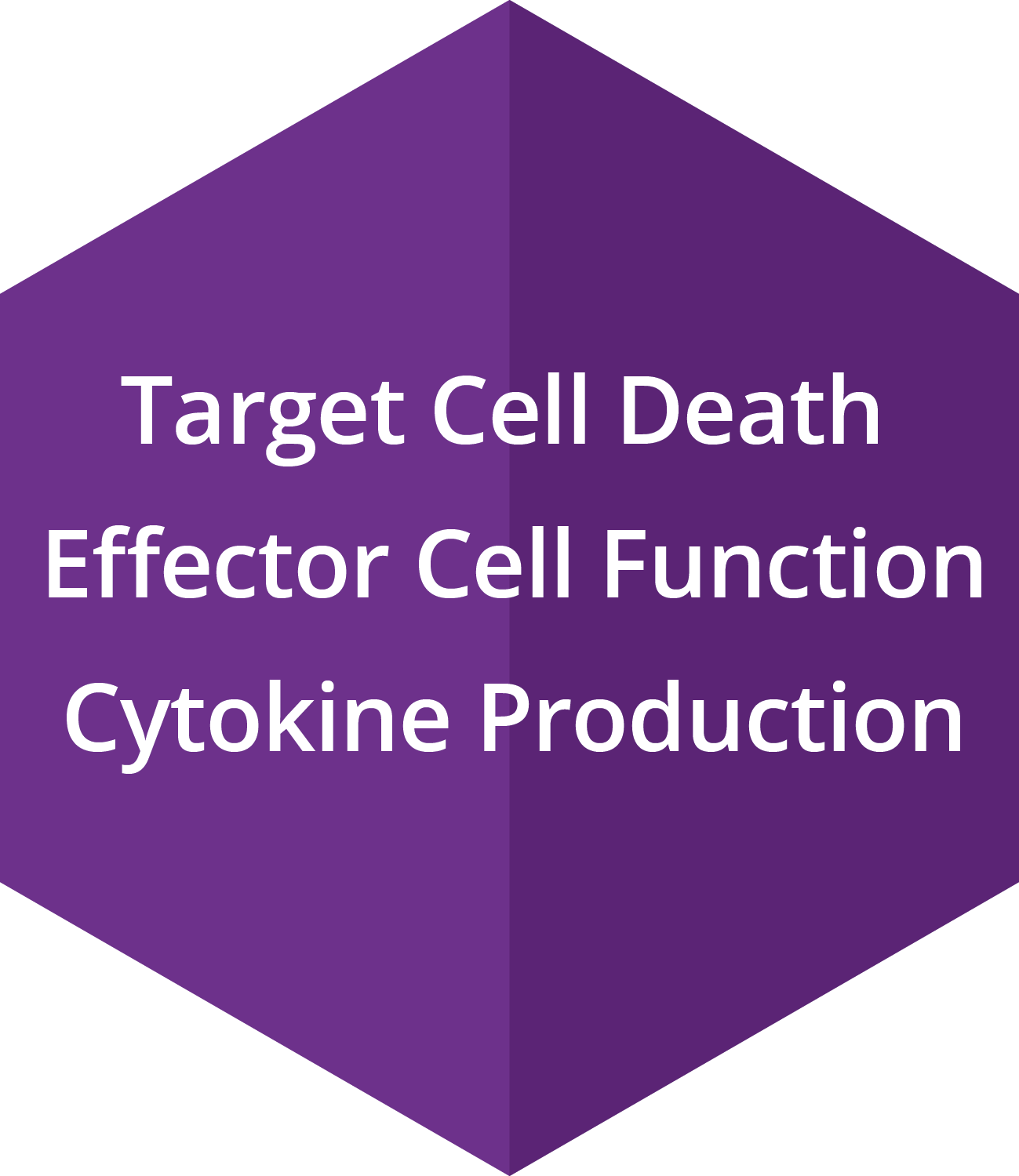 Target Cell Death, Effector Cell Function, Cytokine Production
