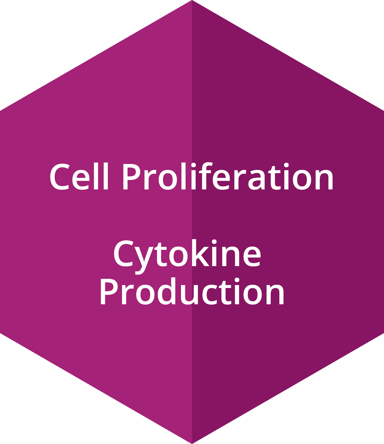 Cell Proliferation, Cytokine Production