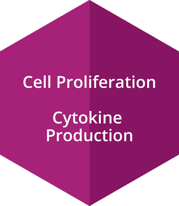 Cell Proliferation, Cytokine Production