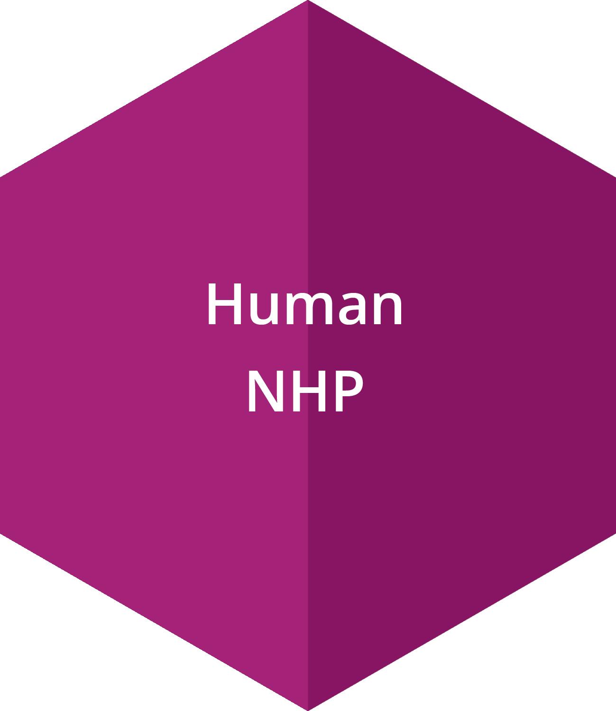 Human, and non-human primate samples
