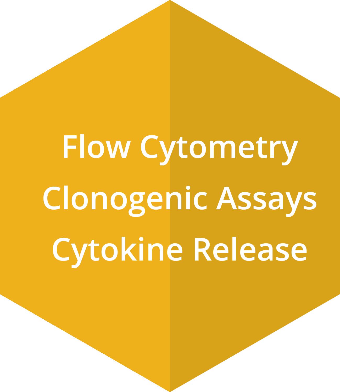 Flow Cytometry, Clonogenic Assays, Cytokine Release