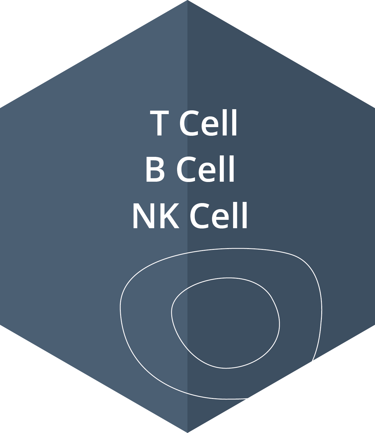 T Cell, B Cell, NK Cell