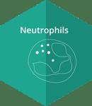 Neutropenia_Hex1-1