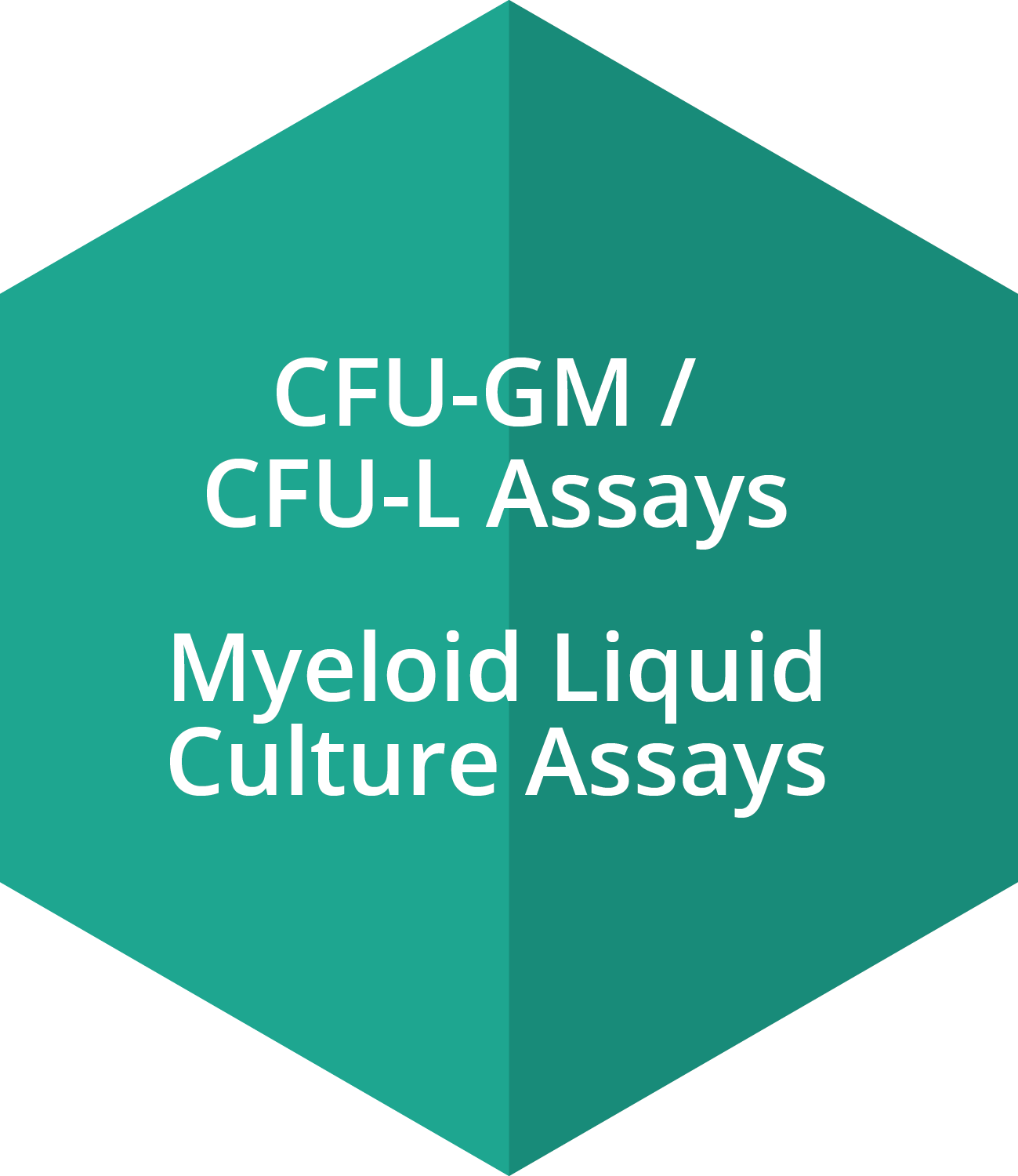 CFU-GM assays, CFU-L assays, Myeloid Liquid Culture Assays