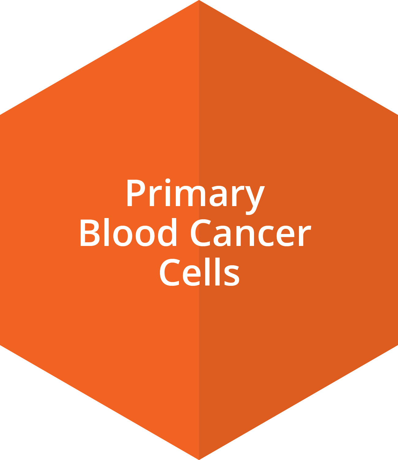 Primary Blood Cancer Cells