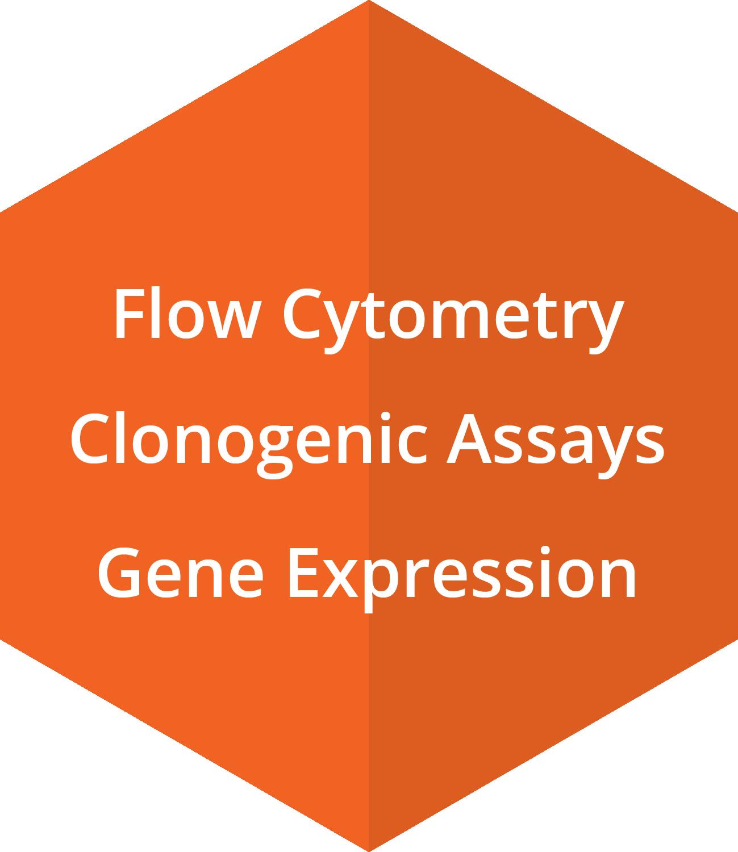 Flow Cytometry, Clonogenic Assays, Gene Expression